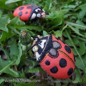 LadybugsWM