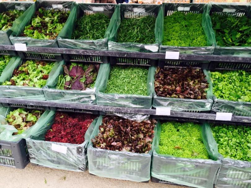 Mercado Biologico Principe Real - Marche bio Lisbonne