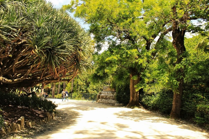Allee du jardin botanique de Lisbonne