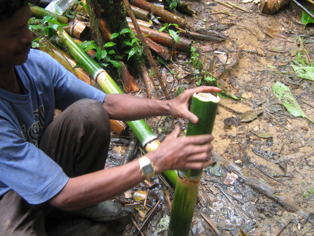 guide-cutting-bamboo-for-water