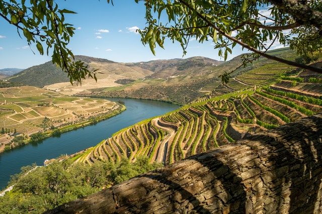 Best wine regions in Europe