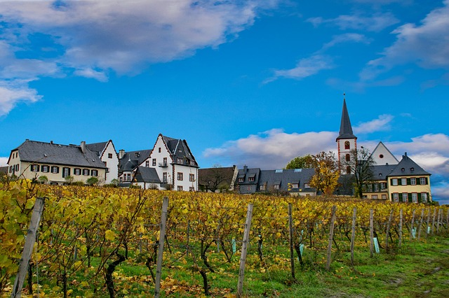 Best wine destinations in Europe