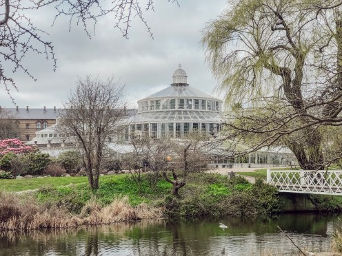 born-to-be-lovers-copenhague-jardin-botanique