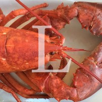 Blog Post: L is for Lobster with a View