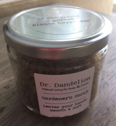 Dr. Dandelion (2)