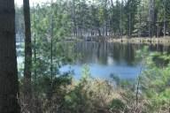 Reid State Park