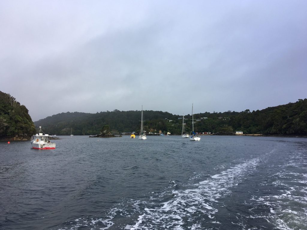 Leaving Golden Bay for Ulva Island