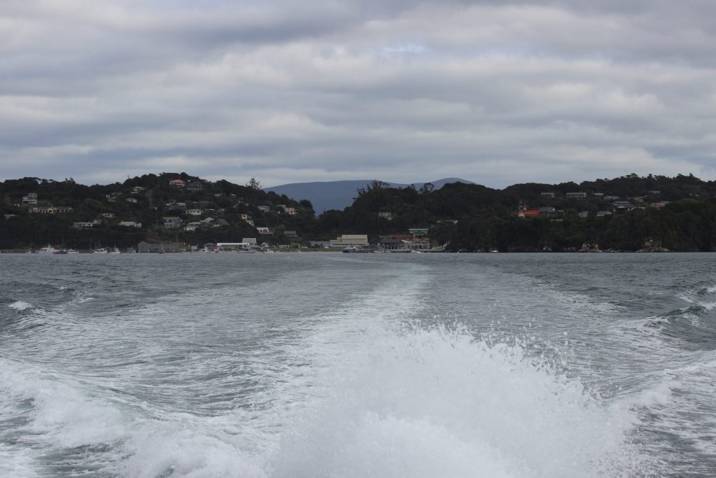 Goodbye Stewart Island