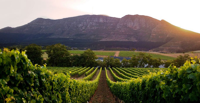 4 Honeymoon Destinations In Cape Town