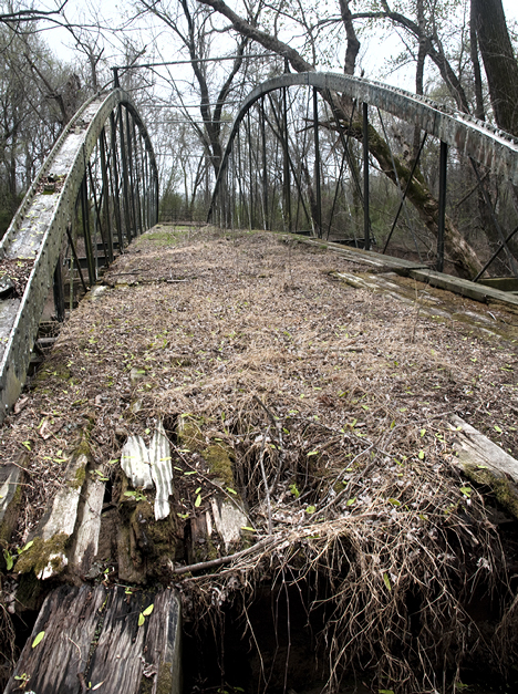Leaves and vines dropping on the floor of the bridge have, over the years, created a layer of humus. No doubt, a good crop of grass will grow on the bridge in warmer months.