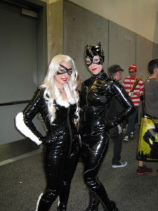 Black Cat (left) from Marvel & Catwoman (right) from DC.