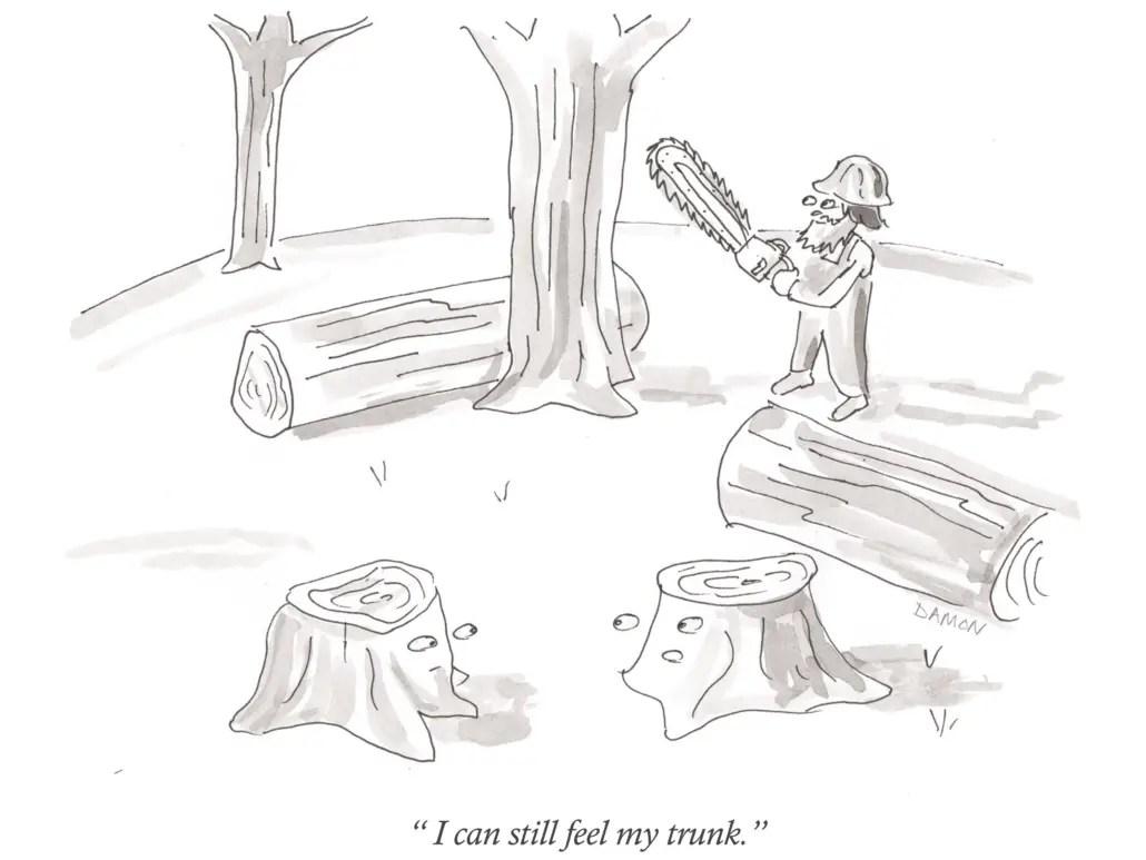 cartoons-mcarthur-trunk
