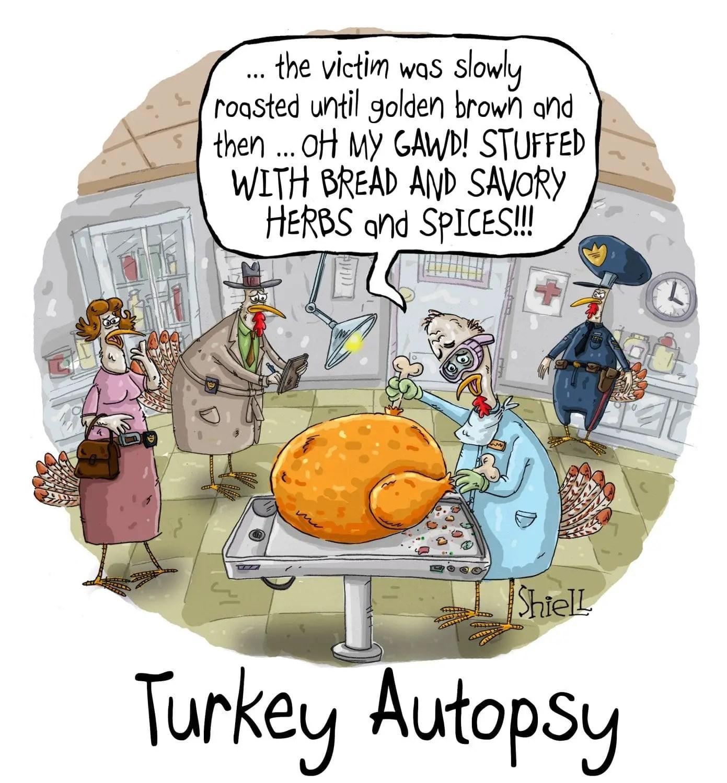 mike_shiell_turkey_autopsy_01