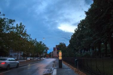 At dawn after a rain.