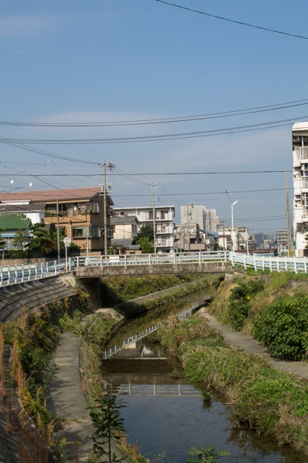 Looking for birds, koi and turtles along the canal -Yamazaki River in Nagoya.