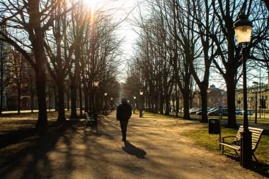 Sunny walk on Kungsgatan.