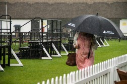 Pouring rain and thunder on the July racecourse.