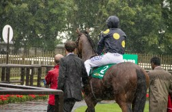 Wet! On July racecourse, Newmarket.