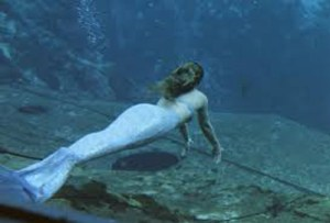 mermaids_miamiC