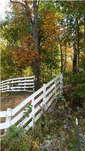 warrior-fence