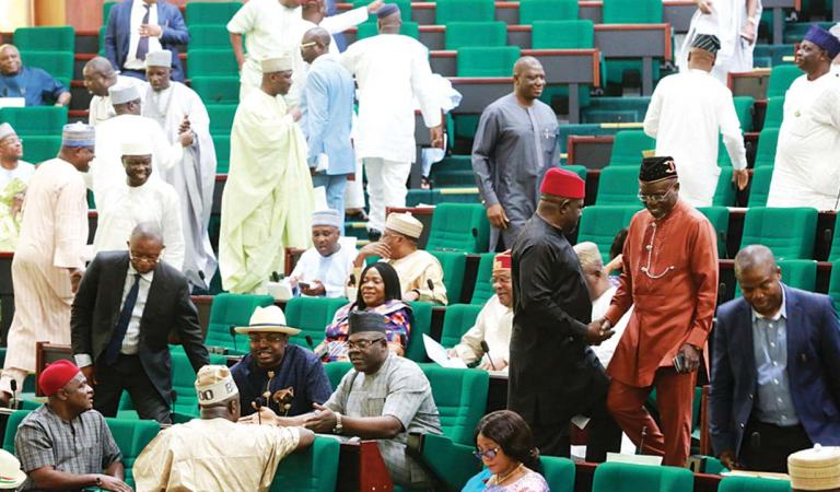 Insecurity: House of Representatives Introduces Bill To Allow All Nigerians To Carry Guns
