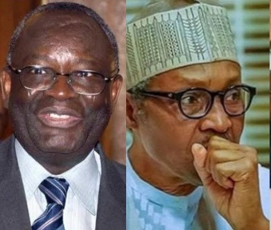 Come Back Next Time, President Is Not Available — Chief Of Staff, Gambari Stops Ekiti Gov From Seeing Buhari