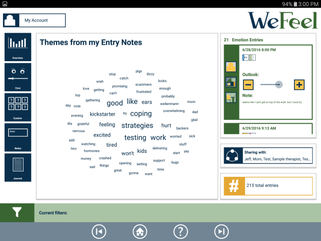 The word cloud in the Themes from my Entry Notes