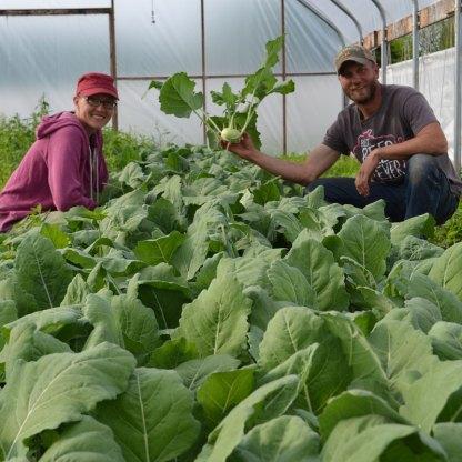 We Grow Kohlrabi