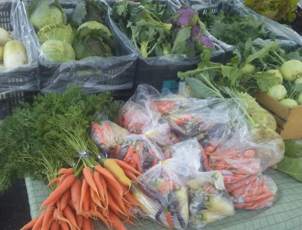We Grow at the Medford Farmers Market in Wisconsin