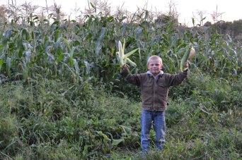 Farmer Dene