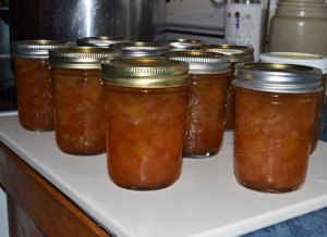 Rhubarb Orange Zest Marmalade