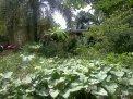 wpid-IMG_20130924_132326.jpg