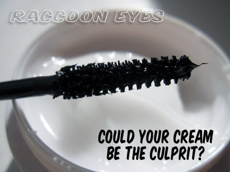 raccooneyes The Secret to Smudge Proof Eye Makeup