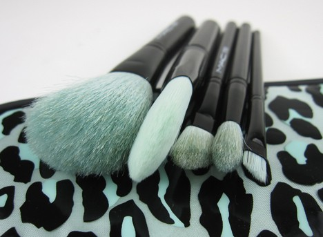 MACprimpedbrush3 MAC Fabulousness: Primped Out Perfectly Plush Essential Brush Kit   review, photos & swatches