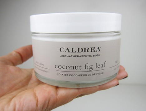 caldrea coconut fig leaf
