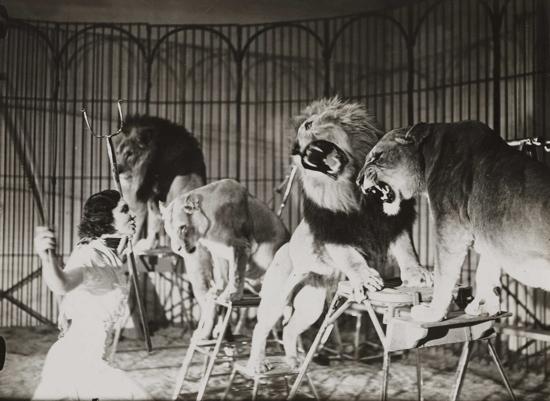 Vintage circus: lion tamer