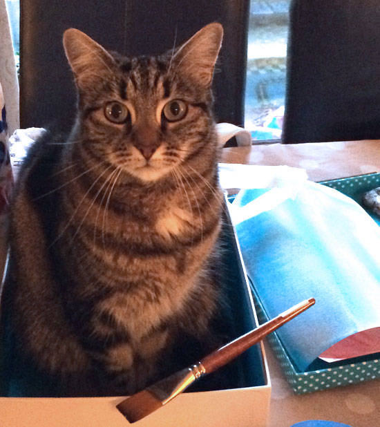 My cat Poppy helping me draw - she can't resist a box to sit in!