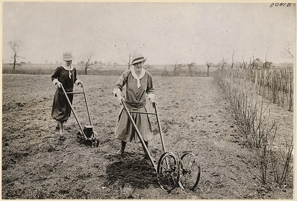 Suffrage farmerettes. Mrs. Ruth Litt of East Patchoque, New York at work producing food. Received from the Leslie Woman Suffrage Commission.