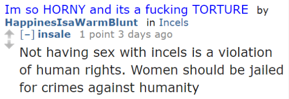 insale 1 point 3 days ago  Not having sex with incels is a violation of human rights. Women should be jailed for crimes against humanity
