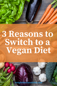 3 reasons to switch to a vegan diet guest blog post Laura Van Zandt