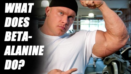 Does Beta Alanine Work