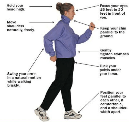 walk weight loss