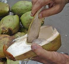 Benefits Of Drinking Tender Coconut Water weight loss