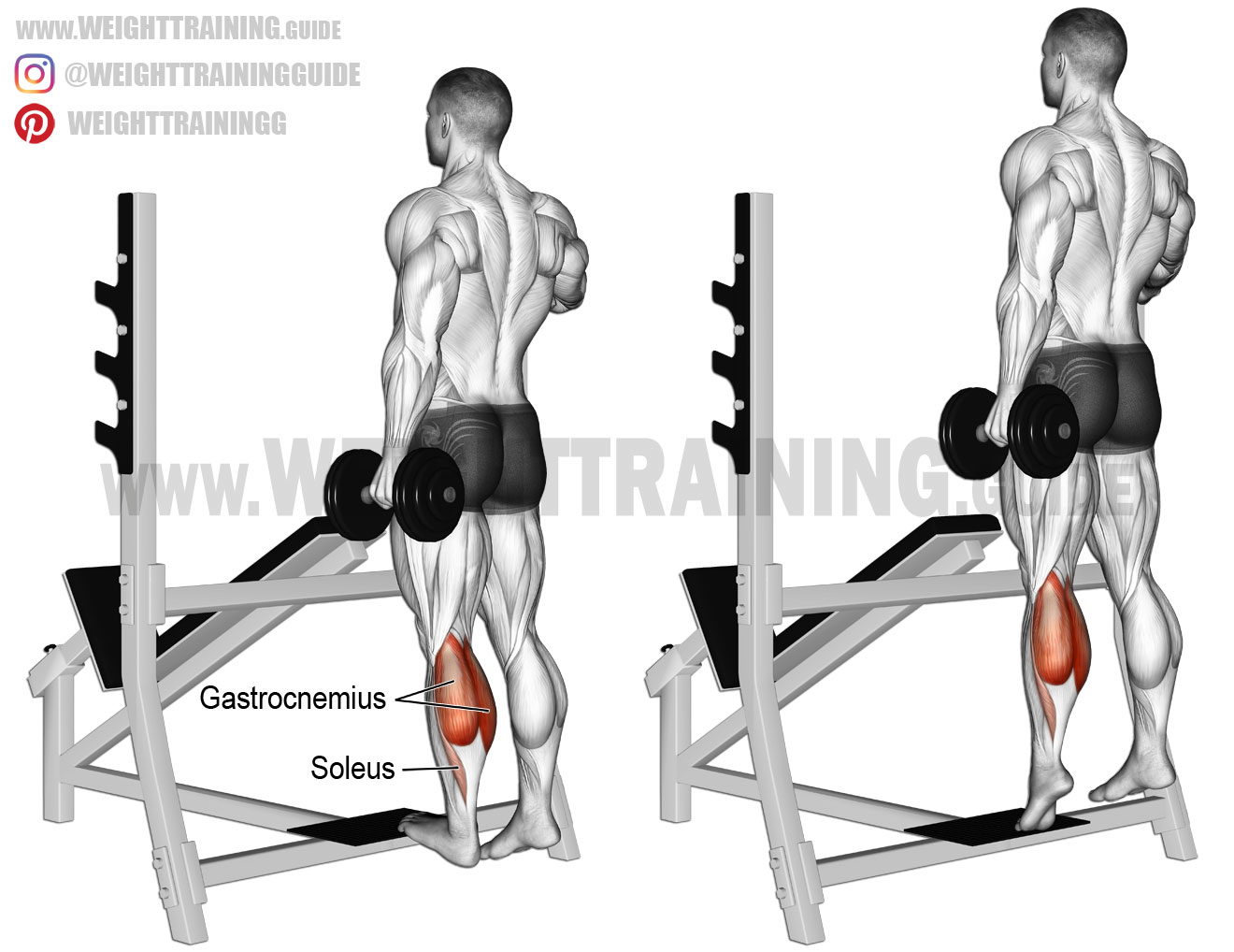 Standing Dumbbell One Leg Calf Raise Exercise Instructions