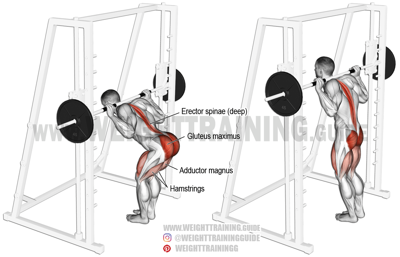 Smith Machine Bent Knee Good Morning Exercise Instructions