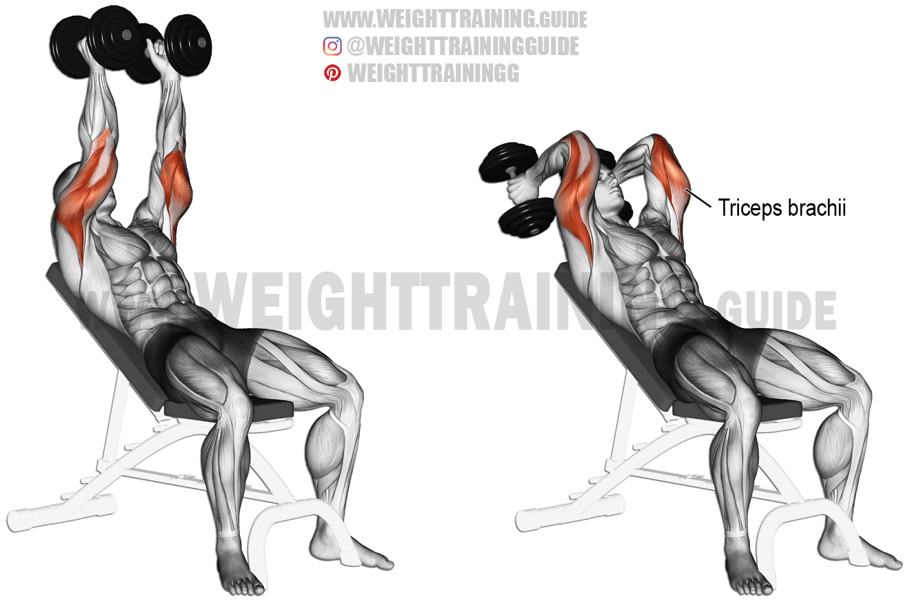 Incline Dumbbell Triceps Extension Exercise Instructions