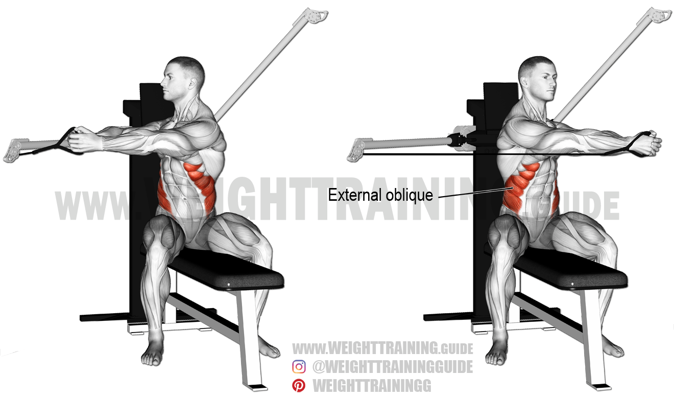 Seated Cable Twist Exercise Instructions And Video