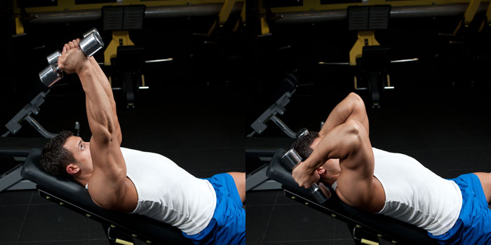 Incline Dumbbell Triceps Extension Weight Training