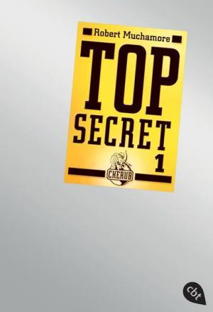 Top Secret 1 - Der Agent | Weihnachtsmarkt Bonn