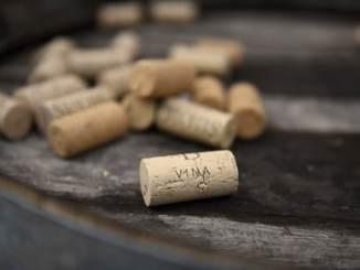 Burgund Der Korkfehler ist ein Weinfehler auch genannt Korkschmecker oder der Wein korkt Rioja und Reserva Wein